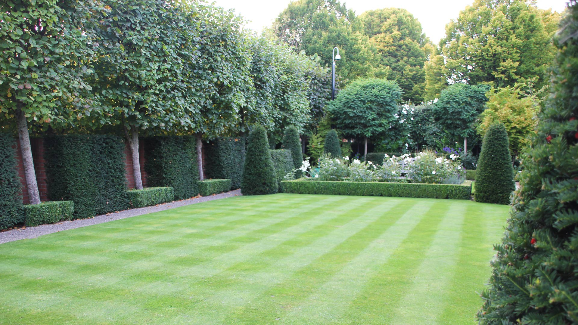 Lawn care service damian costello garden design for Garden landscaping services