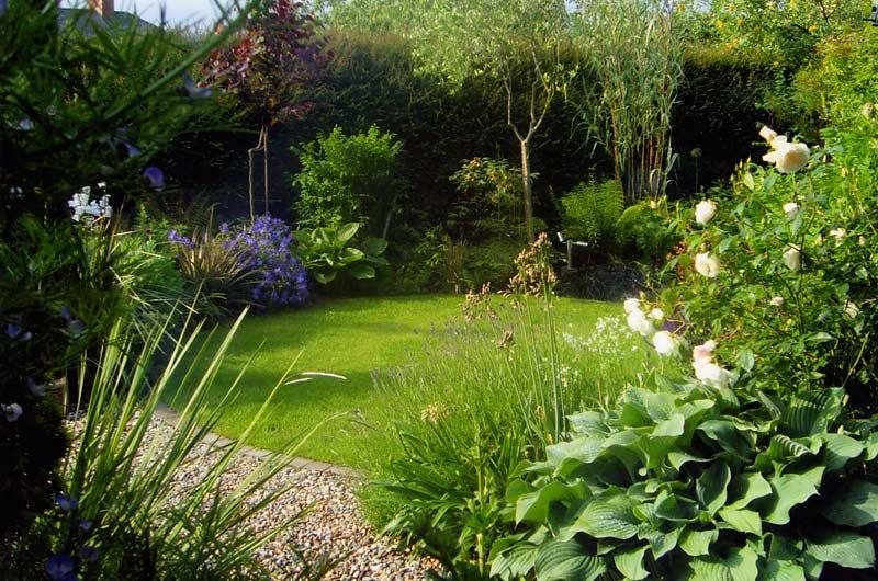 Small Suburban Garden
