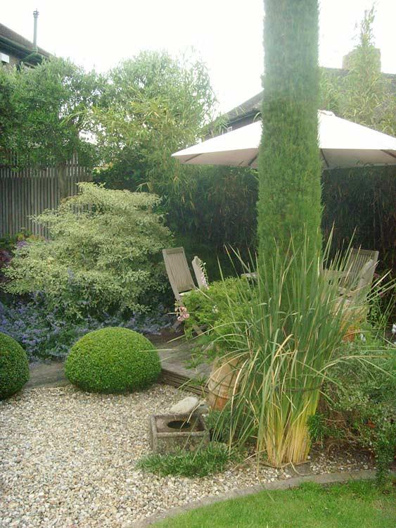 Suburban garden Damian Costello