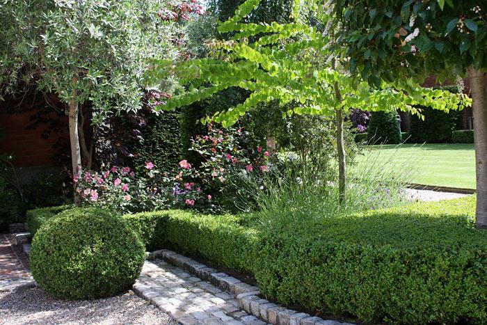 Large Suburban Garden - Damian Costello Garden Design